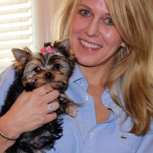 17 carrie touchette 14 week old yorkie Lorient