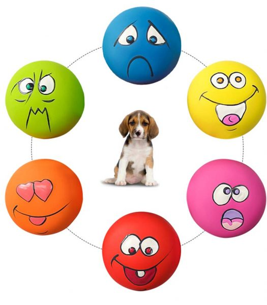 silly faces squeaky ball dog toy